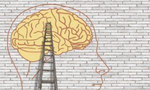 脳が自分で