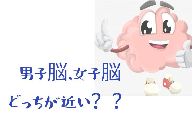 男子脳、女子脳どっちが近い?